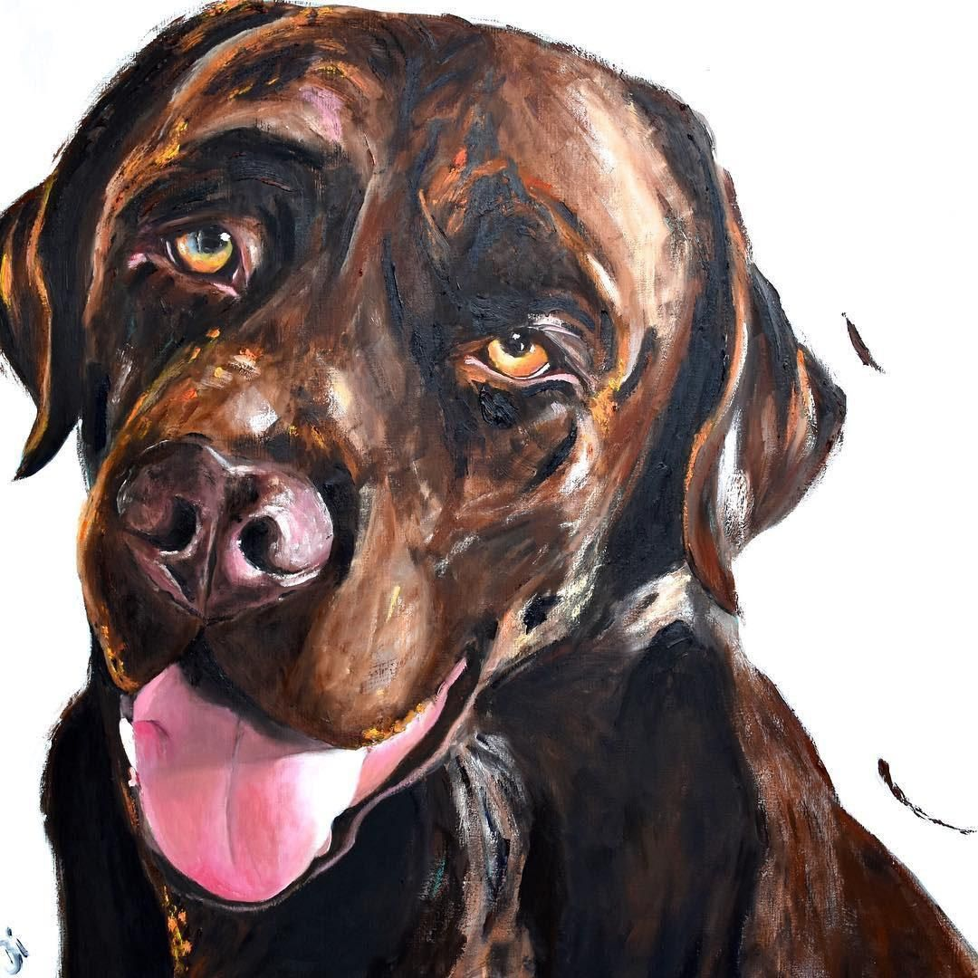 asso-portret-hond-ddc13500 Asso - € 1690 - Bianca Lever